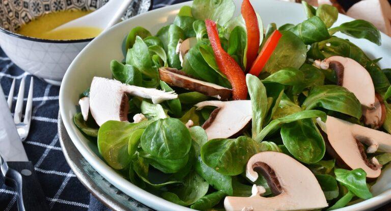 Vegetar måltidskasser månedligt - Mere luft i en travl hverdag